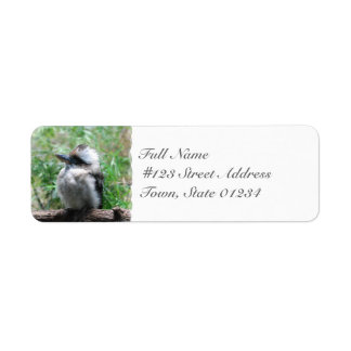 Etiquetas de correo de risa de Kookaburra Etiqueta De Remite