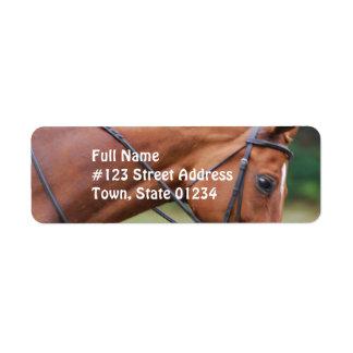 Etiquetas de correo del caballo de la demostración etiqueta de remite
