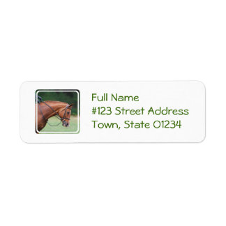 Etiquetas de correo del caballo de la demostración etiquetas de remite