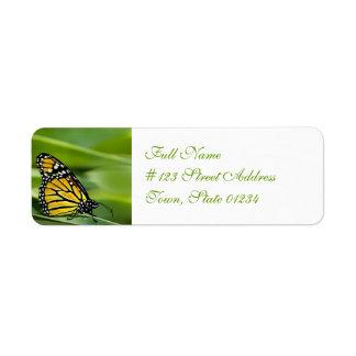 Etiquetas de correo del diseño de la mariposa de etiqueta de remite