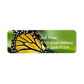 Etiquetas de correo del diseño de la mariposa de m etiquetas de remite
