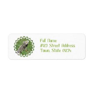 Etiquetas de correo del lagarto etiqueta de remite