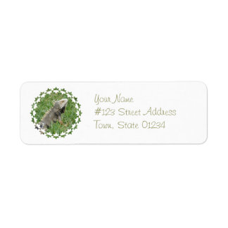 Etiquetas de correo del lagarto etiquetas de remite
