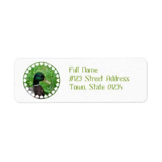 Etiquetas de correo del pato silvestre etiqueta de remite
