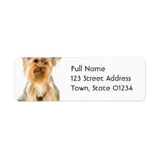 Etiquetas de correo del perrito de Yorkie Etiquetas De Remite