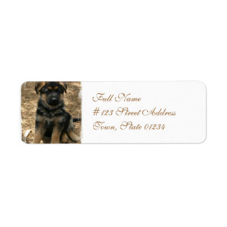 Etiquetas de correo del perrito del pastor etiqueta de remite
