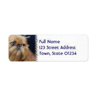 Etiquetas de correo del perro de Bruselas Griffon Etiquetas De Remite
