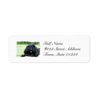 Etiquetas de correo del perro de Puli Etiquetas De Remite