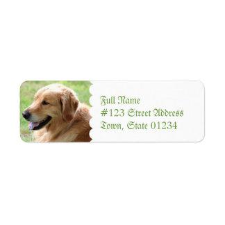 Etiquetas de correo del remite del perrito del etiqueta de remite