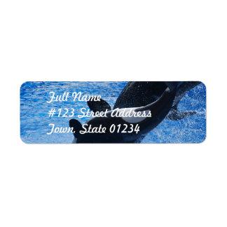 Etiquetas de correo del trío de la orca etiquetas de remite