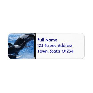 Etiquetas de correo del trío de la orca etiqueta de remite