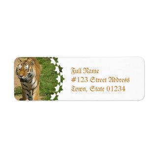 Etiquetas de correo del vagabundeo del tigre etiqueta de remitente