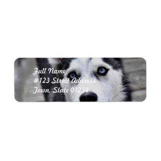 Etiquetas de correo fornidas del perrito etiquetas de remite