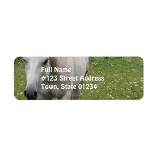 Etiquetas de correo grises del caballo etiqueta de remitente