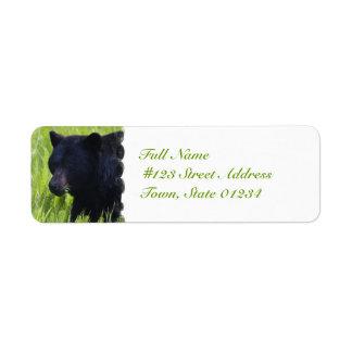 Etiquetas de correo hambrientas del oso negro etiqueta de remite