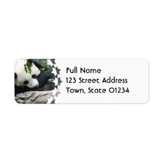 Etiquetas de correo lindas de la panda etiquetas de remite