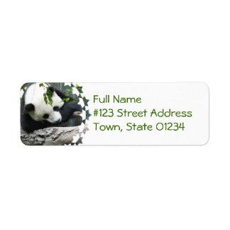 Etiquetas de correo lindas de la panda etiqueta de remite