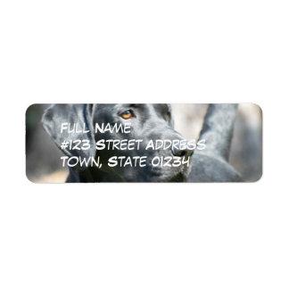 Etiquetas de correo negras alertas del perro del etiquetas de remite