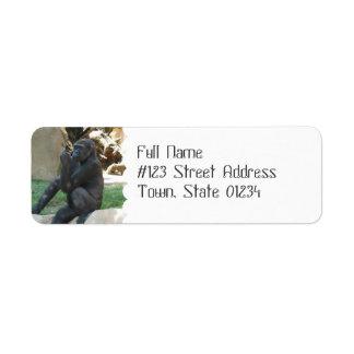 Etiquetas de correo pensativas del gorila etiquetas de remite