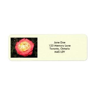 Etiquetas de correo personalizadas etiqueta de remite