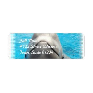 Etiquetas de correo presumidas de la ballena de la etiquetas de remite