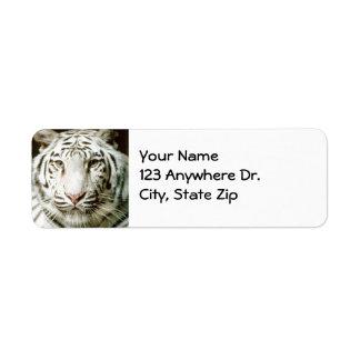 Etiquetas de devolución blancas del tigre etiqueta de remite