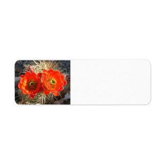 Etiquetas de devolución del flor de Cacus Etiqueta De Remite