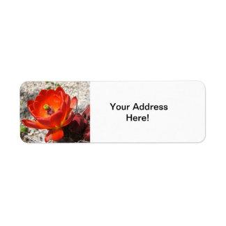 Etiquetas de devolución del flor del cactus etiquetas de remite