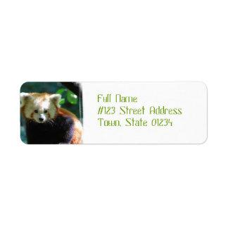 Etiquetas de dirección adorables de la panda roja