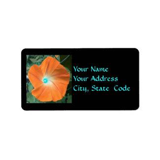 Etiquetas de dirección anaranjadas de la