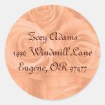 etiquetas de dirección anaranjadas de los rosas pegatinas redondas