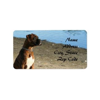 Etiquetas de dirección Brindle del perro del boxea