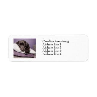 Etiquetas de dirección de encargo del perro de Lab