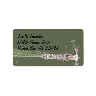 Etiquetas de dirección de la familia del pato de m