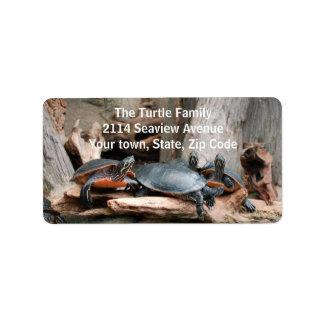 Etiquetas de dirección de la foto de las tortugas