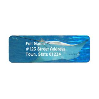 Etiquetas de dirección de la natación de la pastin