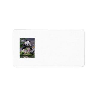 Etiquetas de dirección de la panda