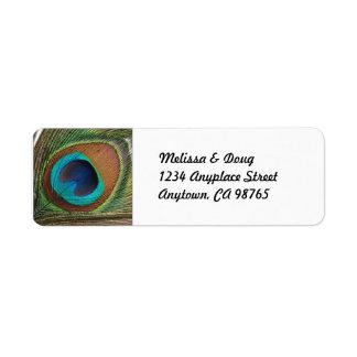 Etiquetas de dirección de la pluma del pavo real