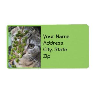 Etiquetas de dirección de ocultación del gatito