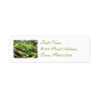 Etiquetas de dirección de reclinación del lagarto