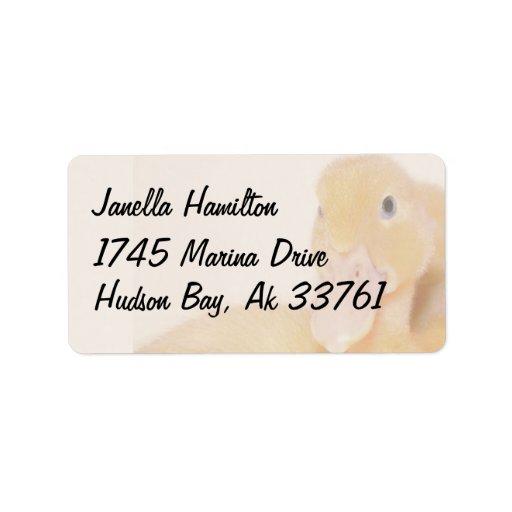 Etiquetas de dirección del anadón