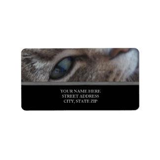 Etiquetas de dirección del ojo de gato