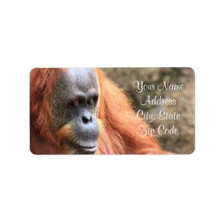 Etiquetas de dirección del orangután