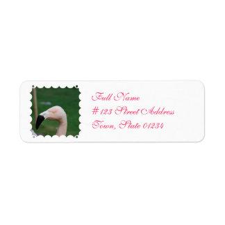 Etiquetas de dirección del pájaro del flamenco