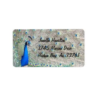 Etiquetas de dirección del pavo real