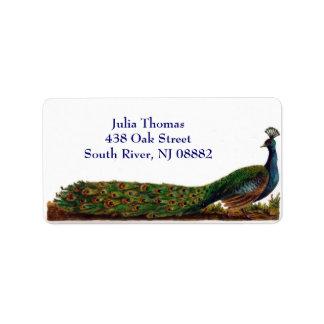 Etiquetas de dirección del pavo real del Victorian