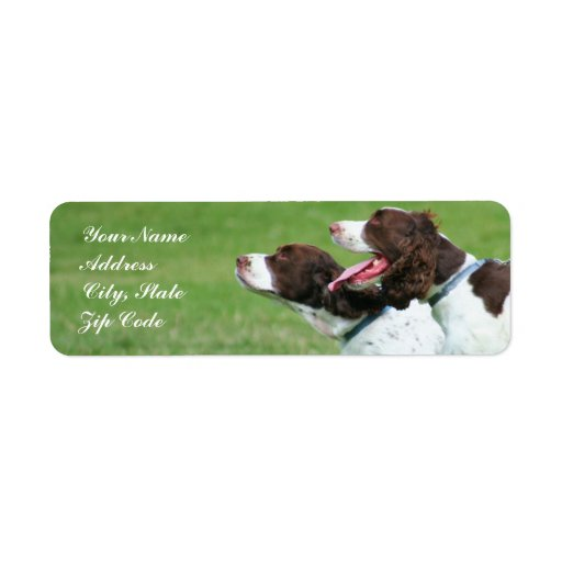 Etiquetas de dirección del perro de aguas de Breta