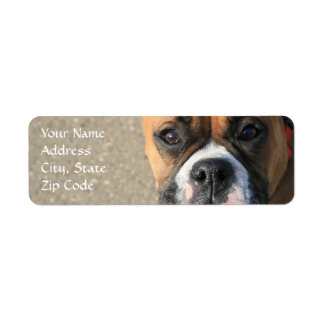 Etiquetas de dirección del perro del boxeador