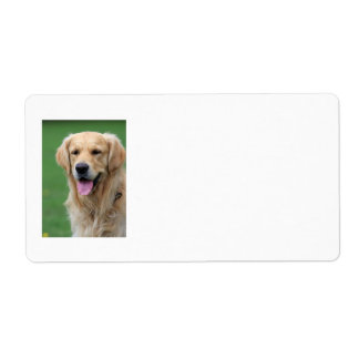 Etiquetas de dirección del perro del golden retrie