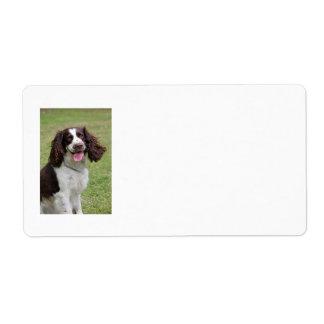 Etiquetas de dirección del perro del perro de agua